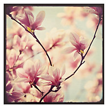 Buy Hotchpotch Pink Blossom Greeting Card Online at johnlewis.com
