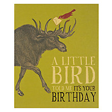 Buy Art File Raindeer Birthday Card Online at johnlewis.com