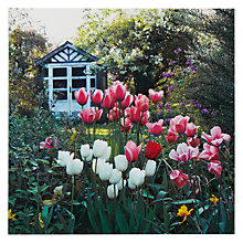 Buy Paperhouse In The Garden Greeting Card Online at johnlewis.com