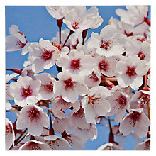 Buy Paperhouse Cherry Blossom Greeting Card Online at johnlewis.com