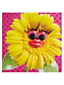 Paper Rose Sunshine on My Face Greeting Card