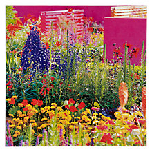 Buy Paperhouse Bright Flowers Greeting Card Online at johnlewis.com