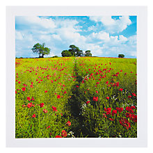 Buy PJF Photography Poppy Trail Greeting Card Online at johnlewis.com