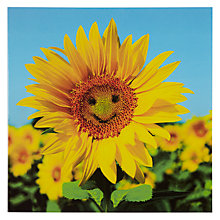 Buy Woodmansterne Smiling Sunflower Greeting Card Online at johnlewis.com