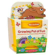 Buy Little Pals Giant Sunflower Growing Pot of Fun Online at johnlewis.com