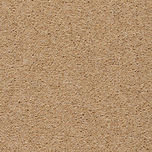 Buy Axminster Devonia Heathers 2 Ply 50oz Twist Carpet Online at johnlewis.com