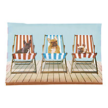 Buy Catseye Deckchair Dog Tissues Online at johnlewis.com