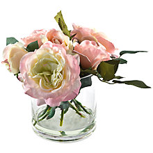 Buy Peony Rose Mix In Glass Cube, Pink, Small Online at johnlewis.com