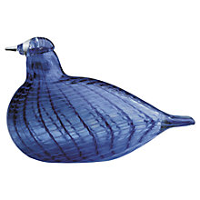 Buy Iittala Toikka Blue Bird Online at johnlewis.com