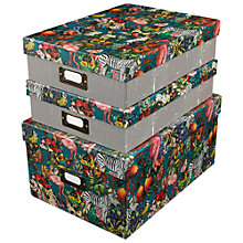 Buy Wanderlust Zebra Nested Boxes, Set of 3 Online at johnlewis.com