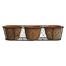 Buy Fallen Fruits Terracotta Pots in Wire Basket, Set of 3 Online at johnlewis.com