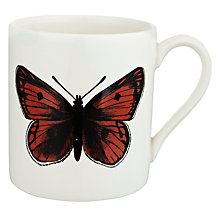 Buy Royal Stafford Edward Challinor Butterfly Mug Online at johnlewis.com
