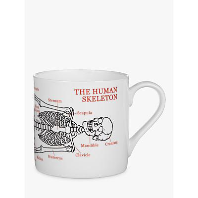 McLaggan Smith Educational Skeleton Mug, 0.45L