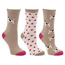 Buy John Lewis Dog Cotton Mix Ankle Socks, Multi Pack of 3 Online at johnlewis.com