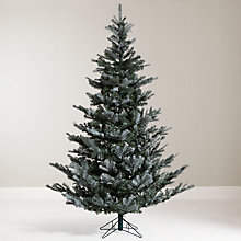 Buy John Lewis Croft Collection Christmas Tree, Silver Forest Spruce, 7ft Online at johnlewis.com