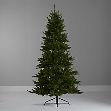 Buy John Lewis Melrose Meadow Pine Christmas Tree, 6ft Online at johnlewis.com