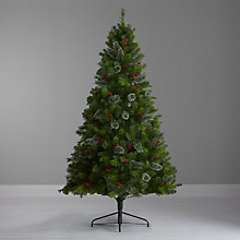 Buy John Lewis Balmoral Christmas Tree, 7ft Online at johnlewis.com