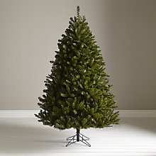 Buy John Lewis Highland Woodland Fir Christmas Tree, 7ft Online at johnlewis.com