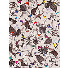 Buy Osborne & Little Bird Song Wallpaper Online at johnlewis.com
