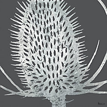Buy Art Marketing, Sabrina Roscino - Teasel Embellished Print on Canvas, 90 x 90cm Online at johnlewis.com