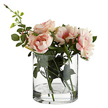 Buy Peony Large Rose Cylinder, Pink Online at johnlewis.com