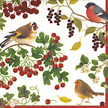 Buy Caspari Triple-Ply Birds Paper Napkins, Pack of 20, 33 x 33cm Online at johnlewis.com