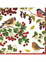 Caspari Birds Disposable Napkins, Set of 20