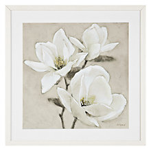 Buy Adelene Fletcher - Magnolia Trio Framed Print, 54 x 54cm Online at johnlewis.com