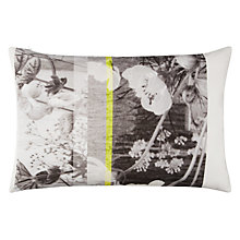 Buy John Lewis Copenhagen Rosendal Cushion Online at johnlewis.com