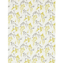 Buy Sanderson Home Wisteria Blossoms Paste the Wall Wallpaper Online at johnlewis.com