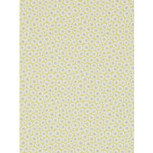 Buy Sanderson Wind Flowers Paste the Wall Wallpaper Online at johnlewis.com