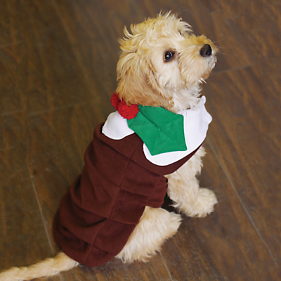 """Rosewood 12"""" Christmas Pudding Dog Outfit"""