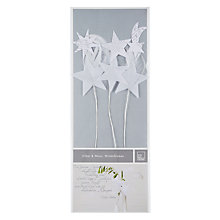 Buy Rader Silver and White Winter Star Flowers Online at johnlewis.com