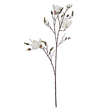 Buy John Lewis Magnolia Stem, White Online at johnlewis.com