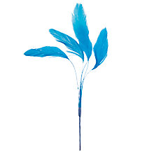 Buy John Lewis Cluster Feather, Peacock Online at johnlewis.com