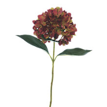 Buy Floralsilk Hydrangea Stem Online at johnlewis.com