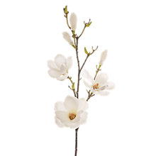 Buy Floral Silk Magnolia Spray Online at johnlewis.com