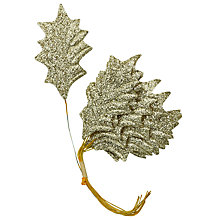 Buy John Lewis Decorative Glitter Holly Leaves, Pack of 12 Online at johnlewis.com