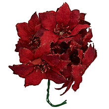Buy John Lewis Glitter Poinsettia Picks Online at johnlewis.com