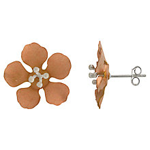 Buy Nina B Sterling Silver and Red Gold Plated Flower Stud Earrings, Silver Online at johnlewis.com