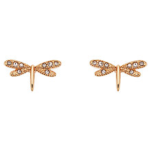 Buy Cachet London Dragonfly Rose Gold Swarovski Crystal Stud Earrings Online at johnlewis.com