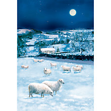 Buy Special Editions Sheep in the Snow Charity Christmas Cards, Pack of 8 Online at johnlewis.com