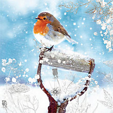 Buy Woodmansterne Garden Companion Charity Christmas Cards, Box of 5 Online at johnlewis.com