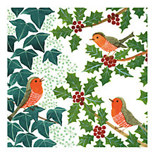 Buy Museums & Galleries Robins and Holly Charity Christmas Cards, Pack of 8 Online at johnlewis.com