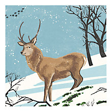 Buy Museums & Galleries Stag in the Snow Charity Christmas Cards, Pack of 8 Online at johnlewis.com