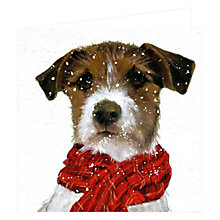 Buy Art Marketing Archie Dog Charity Christmas Cards, Box of 6 Online at johnlewis.com