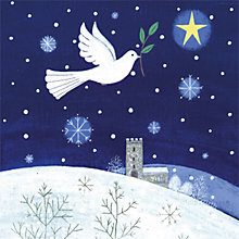 Buy Museums & Galleries Flight of Peace Charity Christmas Cards, Pack of 5 Online at johnlewis.com