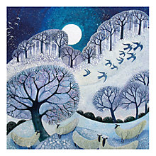 Buy Museums & Galleries Winter Woolies Charity Christmas Cards, Box of 5 Online at johnlewis.com