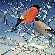 Buy Museums & Galleries Bullfinches Charity Christmas Cards, Pack of 8 Online at johnlewis.com
