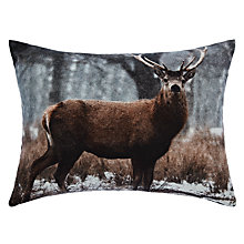 Buy John Lewis Stag Scene Cushion Online at johnlewis.com